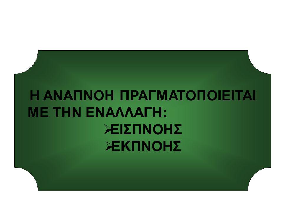 ΕΣΩΤΕΡΙΚΗ-ΕΞΩΤΕΡΙΚΗ ΑΝΑΠΝΟΗ
