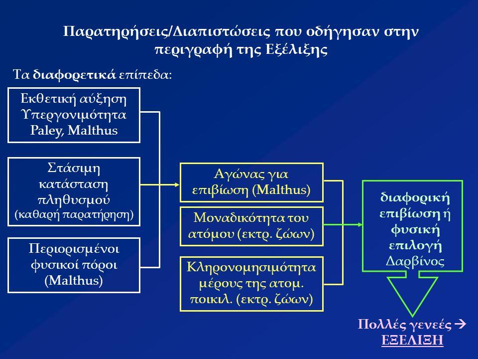 Δαρβινική θεωρία  θεωρία της Εξέλιξης (συνεχής αλλαγή των οργανισμών)  θεωρία Κοινής Καταγωγής/Προέλευσης (διαφορετικά είδη από κοινό πρόγονο)  θεωρία της Ειδογένεσης (αύξηση αριθμού ειδών)  θεωρία της Βαθμιαίας Αλλαγής (συνεχής αλλαγή πληθυσμών)  θεωρία της Φυσική Επιλογής (ανταγωνισμός ατόμων για περιορισμένες πηγές) ΜΗ ΤΥΧΑΙΑ ΕΞΑΛΕΙΨΗ