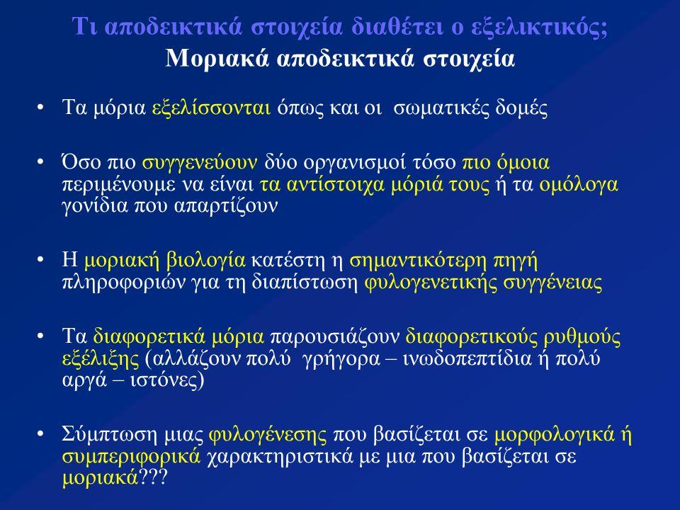 Τι αποδεικτικά στοιχεία διαθέτει ο εξελικτικός; Μοριακά αποδεικτικά στοιχεία Η πολύπλευρη/πολυδιάστατη προσέγγιση είναι η καλύτερη Η μοριακή ανάλυση αποκάλυψε λάθη σε κατατάξεις που στηρίχθηκαν σε μορφολογικά δεδομένα (Πωγωνοφόρα & Εχιουροειδή, άνθρωπος & χιμπατζή) ή αδελφά είδη ή κρυπτικά είδη Σημασία της μοριακής ανάλυσης: αποκάλυψε ότι η βασική μοριακή οργάνωση όλων των οργανισμών ανάγεται στο πολύ μακρινό παρελθόν (η κατάταξη των μυκήτων στο βασίλειο Animalia, οι κατατάξεις ομάδων μέσα στα Αγγειόσπερμα, το χάος που επικρατούσε στα φύλα των «πρωτίστων»)