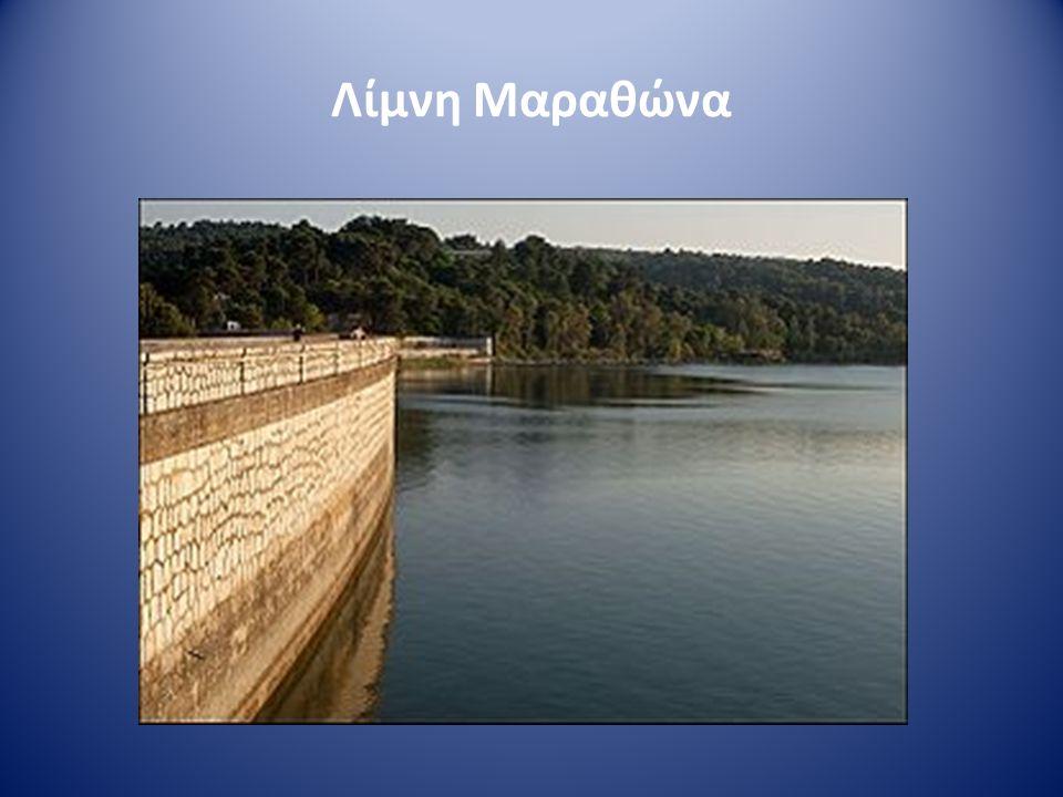 • Δημιουργήθηκε για την ύδρευση της Αθήνας • Κατασκευάστηκε το 1930 • ΄Ηταν το κυριότερο απόθεμα νερού για την πρωτεύουσα μέχρι το 1959 που συνδέθηκε με την Υλίκη.