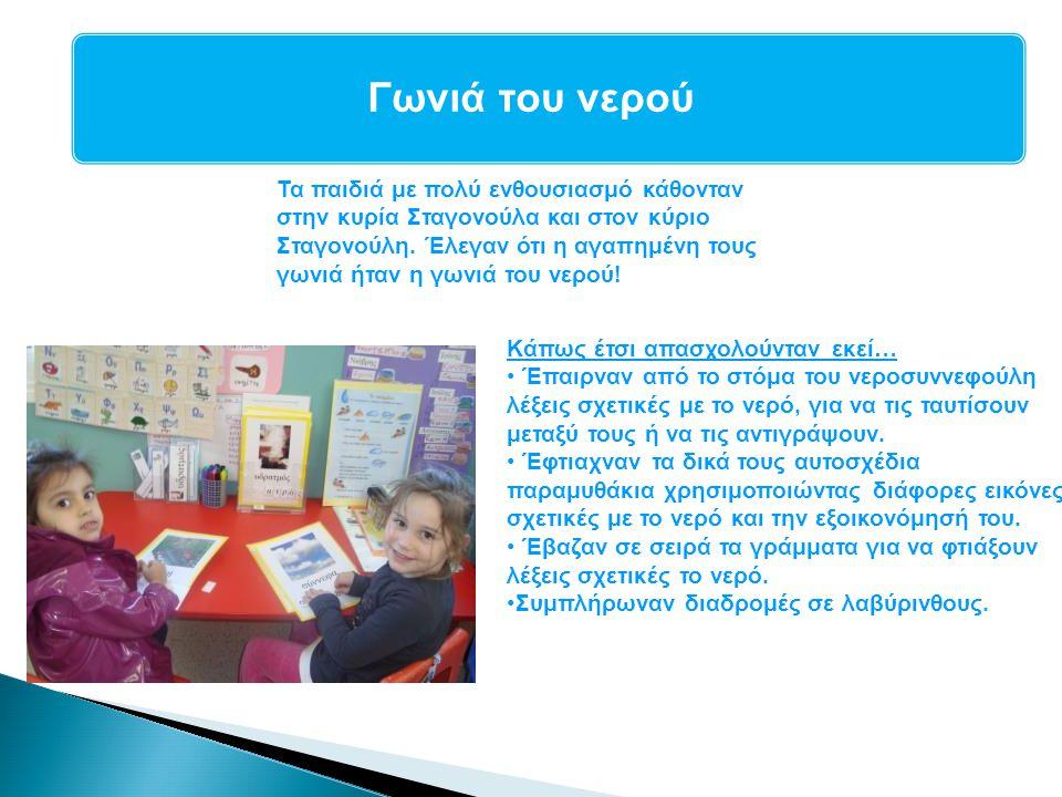 Γλωσσική Αγωγή Το ανθοπωλείο της τάξης μας Το μπακάλικο της τάξης μας μετατράπηκε σε ανθοπωλείο.