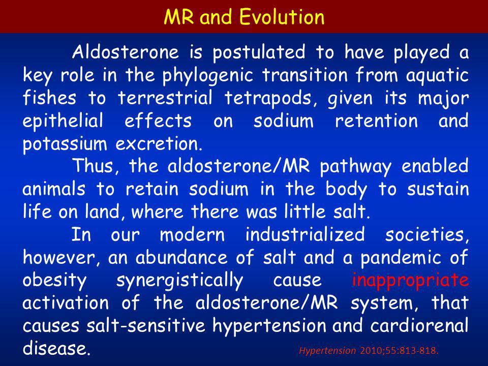 Clin Exp Nephrol (2010) 14:303–314. Phylogenetic perspectives on the aldosterone/MR system CVD