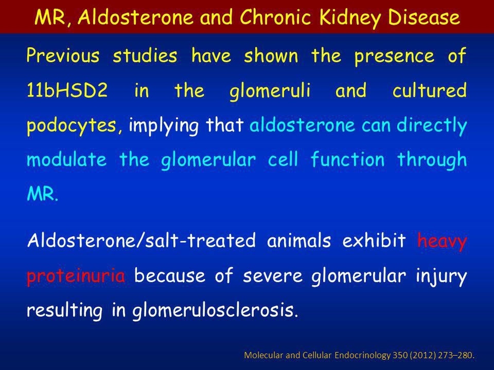 Almost all renal parenchyma are affected Vasculature Glomeruli Tubulointerstitium Renal vascular changes significantly contribute Transmural fibrinoid necrosis Intimal thickening Adventitial fibrosis MR, Aldosterone and Chronic Kidney Disease Molecular and Cellular Endocrinology 350 (2012) 273–280.