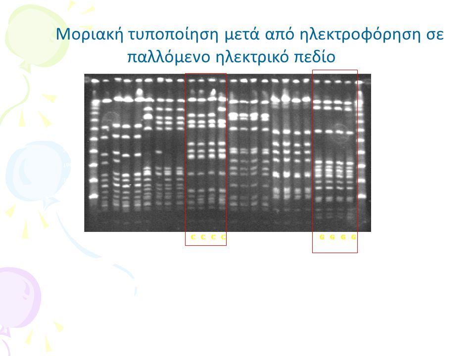Ανάλυση νουκλεοτιδικής αλληλουχίας –MLST: multi locus sequence typing (7 house keeping γονίδια) (mlst.net) –Επιτήρηση της διασποράς των διαφόρων μικροργανισμών παγκόσμια