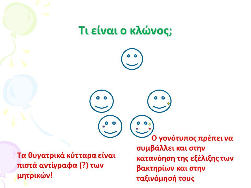 CID 2009:48:1 CID 2009:48:1