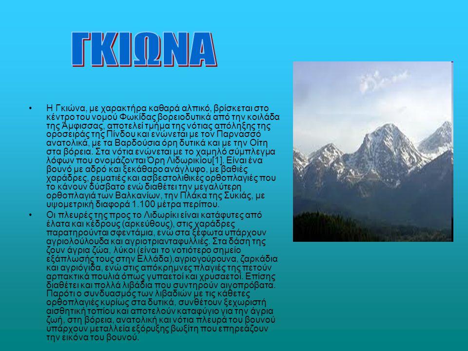 –Η Τύμφη (2.497 μ.) είναι βουνό της Ηπείρου στην επαρχία του Ζαγορίου, λεγόμενο κοινώς «Γκαμήλα» ή και «Βουνά του Παπίγκου».