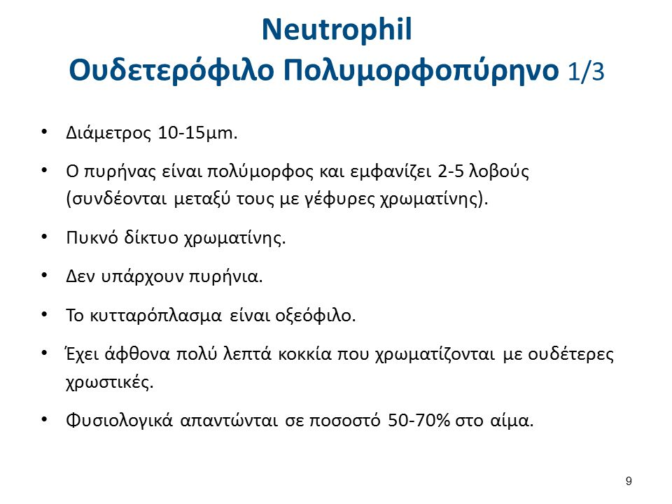 Neutrophil Ουδετερόφιλο Πολυμορφοπύρηνο 2/3 Ανάλογες άωρες μορφές (προμυελοκύτταρα, μυελοκύτταρα, μεταμυελοκύτταρα και ραβδοπύρηνα) παρατηρούνται και στις άλλες δύο σειρές κοκκιοκυττάρων (ηωσινόφιλα και βασεόφιλα), ο αριθμός τους είναι πολύ μικρός και δε λαμβάνονται υπόψη.