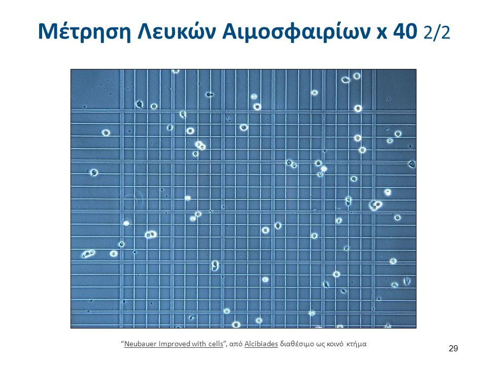 64 x 0,4 x 1/20 = 50 Υπολογισμός 1.Μετράμε τα 4 περιφερικά τετράγωνα.