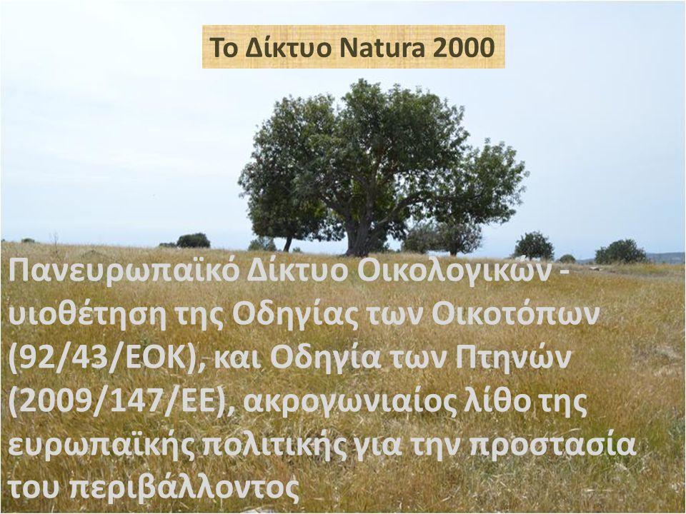 Το Δίκτυο Natura 2000 αποτελείται από: Τόπους Κοινοτικής Σημασίας (ΤΚΣ)- (92/43/ΕΟΚ) - 40 περιοχές για οικότοπους και είδη (Νομος της Φύσης 153(Ι)/2003) Ζώνες Ειδικής Προστασίας (ΖΕΠ)- (2009/147/ΕΕ) - 30 περιοχές για πουλιά (Νόμος για τα άγρια πτηνά 152(Ι)/2003)