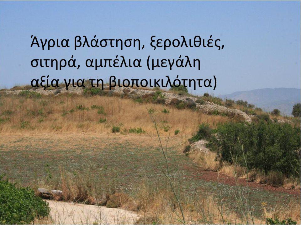 Διατήρηση στοιχείων του τοπίου: διαβιούν αρκετά είδη τα οποία εξαρτώνται από γεωργοκτηνοτροφικά συστήματα