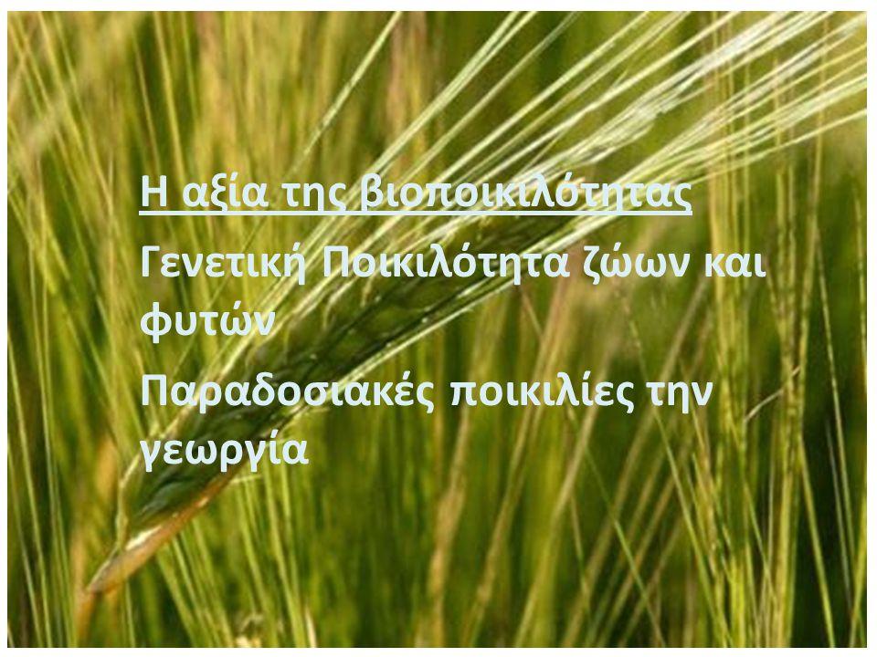 Αγροτικά συστήματα και βιοποικιλότητα Η εξέλιξη της γεωργίας έχει καθορίσει σε μεγάλο βαθμό την εξέλιξη της βιοποικιλότητας