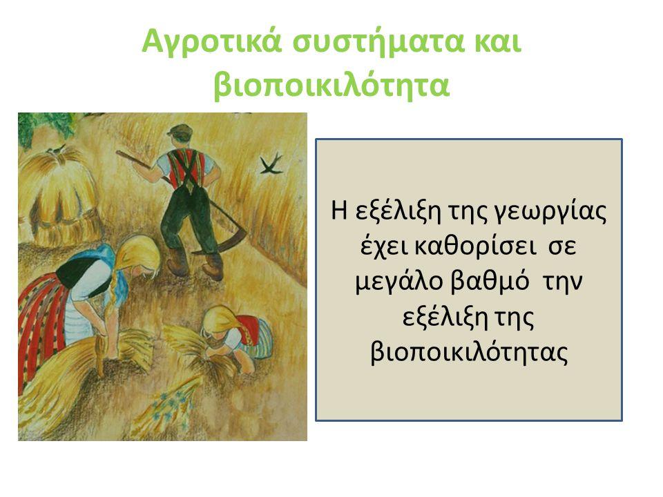Άνθρωπος – γεωργία – βιοποικιλότητα Οι γεωργικές δραστηριότητες εξελίσσονται μαζί με την άγρια ζωή