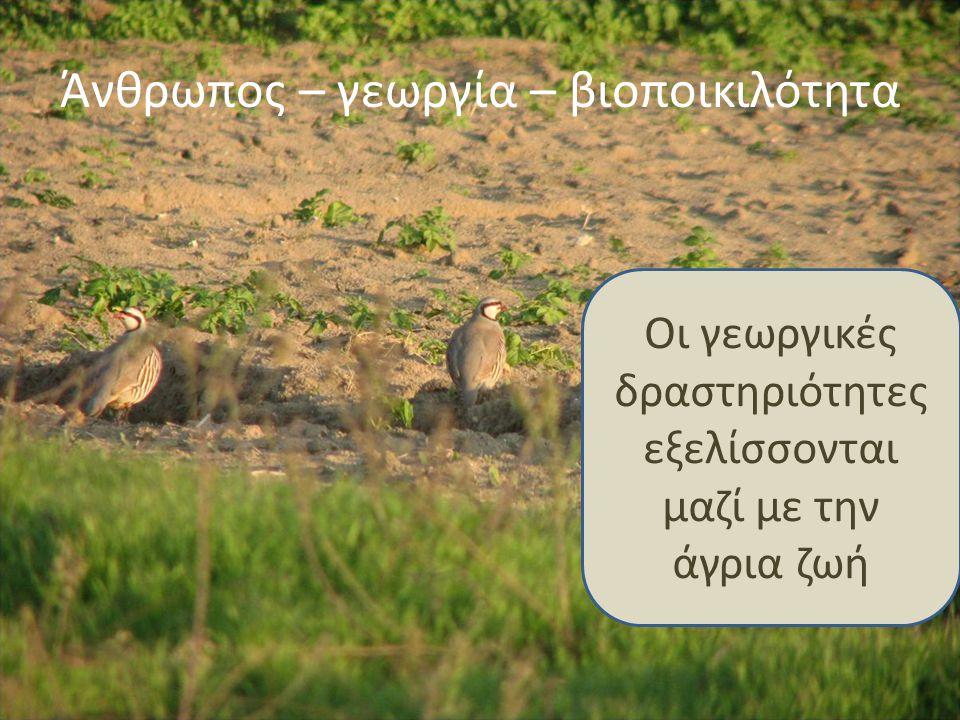 Η γεωργία επωφελείται από τη βιοποικιλότητα και η βιοποικιλότητα επωφελείται από τη γεωργία - αλληλένδετες διεργασίες (το ισοζύγιο της φύσης)