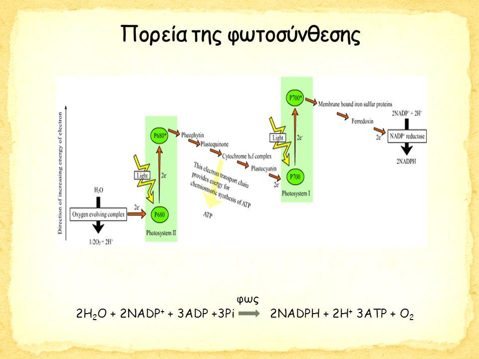 Κρύσταλλοι ZnS Max von Laue (Nobel Φυσικής 1914) Bragg's law of X-ray diffraction: nλ = 2dsinθ
