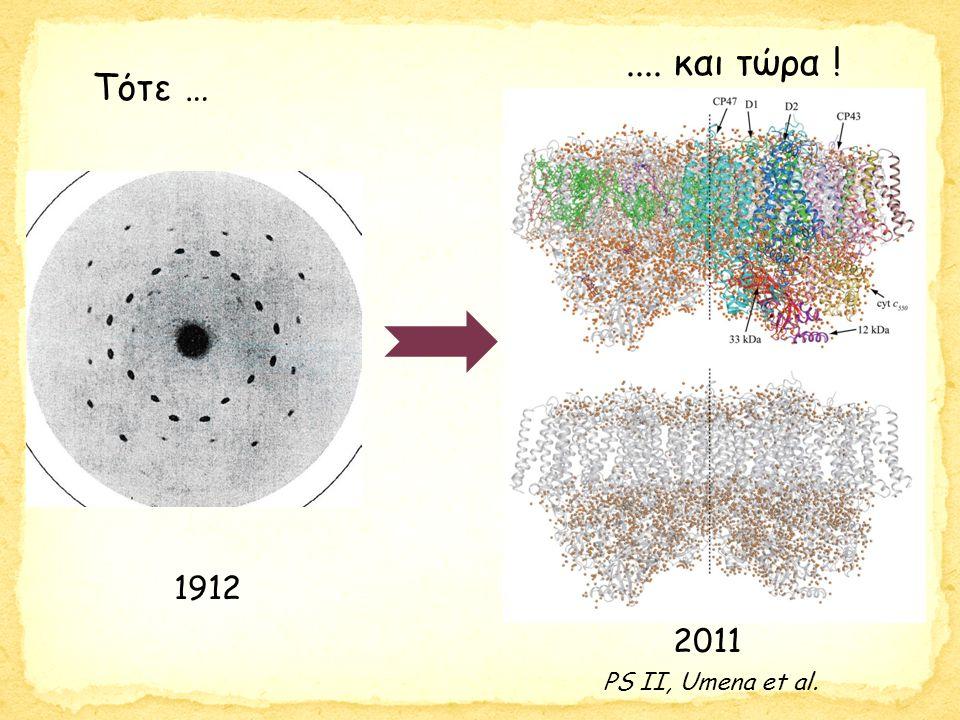 Ferreira, Barber et al., Science 303, 1831-1838 (2004) Δρα ως οξειδοαναγωγάση Αναγωγή πλαστοκινόνης Cyanobacterium Thermosynechococcus elongatus at 3.5 Å Όξείδωση Η 2 Ο 2Η 2 Ο → Ο 2 + 4Η + + 4e -