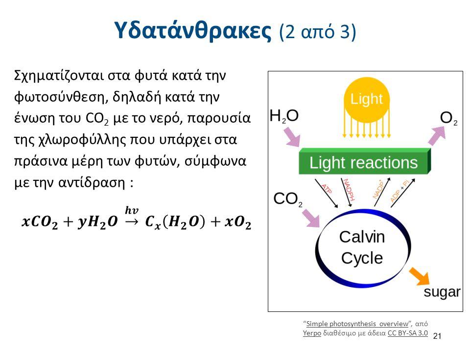 Υδατάνθρακες (3 από 3) Οι υδατάνθρακες μπορούν να διακριθούν σε μονοσακχαρίτες και πολυσακχαρίτες.