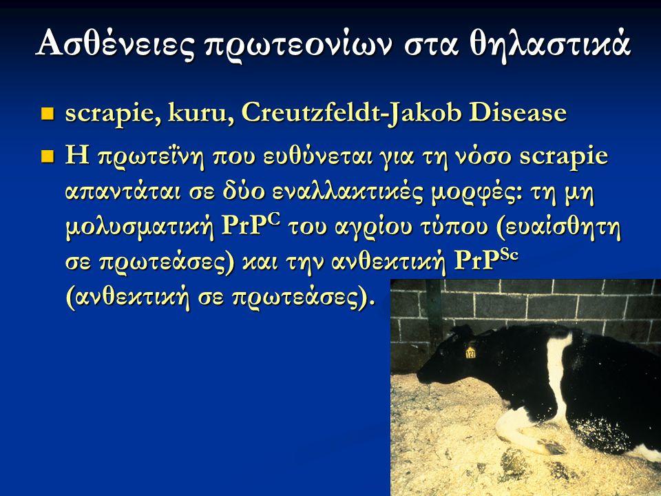 48 Εικόνα 23.47 Η πρωτεΐνη PrP Sc μπορεί να μολύνει ένα ζώο μόνο εάν αυτό φέρει ενδογενή πρωτεΐνη PrP C του ίδιου τύπου.