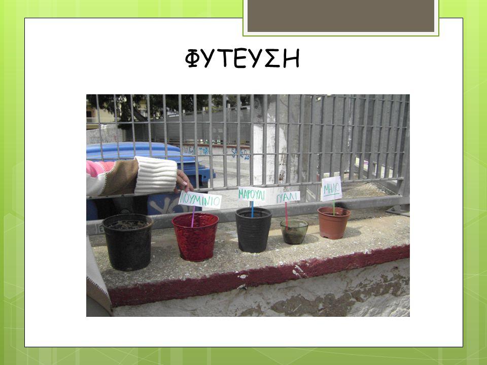 o ΒΙΟΔΙΑΣΠΑΣΗ Στόχος: Να ενημερωθούμε για τα οργανικά απόβλητα και την βιοδιάσπαση Να υιοθετήσουμε πρακτικές συντελούν στη μείωση παραγωγής οργανικών απορριμμάτων Δραστηριότητα:  Εγκατάσταση κάδου κομποστοποίησης στο σχολείο μας