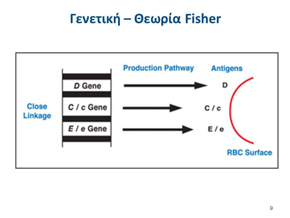 Γενετική – Θεωρία Fisher 9