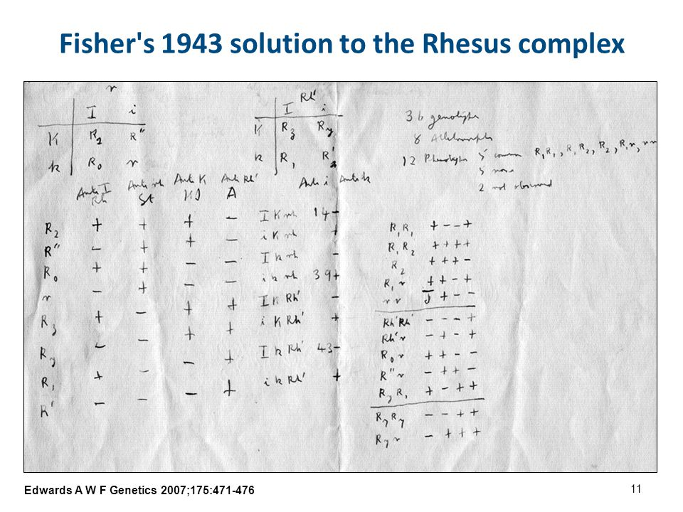 Edwards A W F Genetics 2007;175:471-476 Fisher s 1943 solution to the Rhesus complex 11
