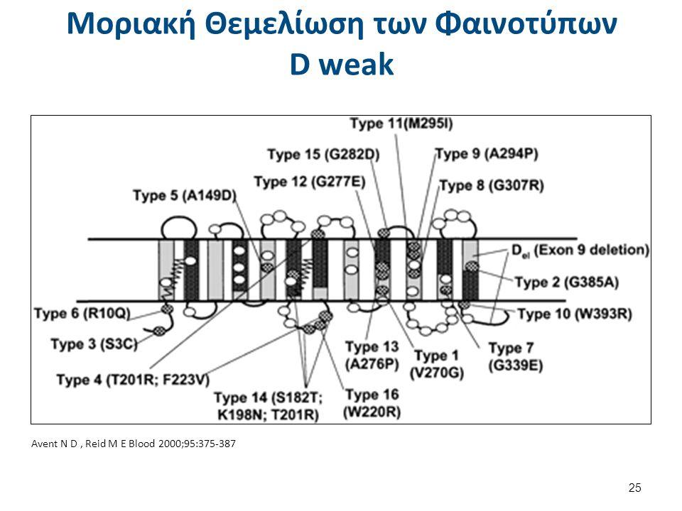 Avent N D, Reid M E Blood 2000;95:375-387 Μοριακή Θεμελίωση των Φαινοτύπων D weak 25