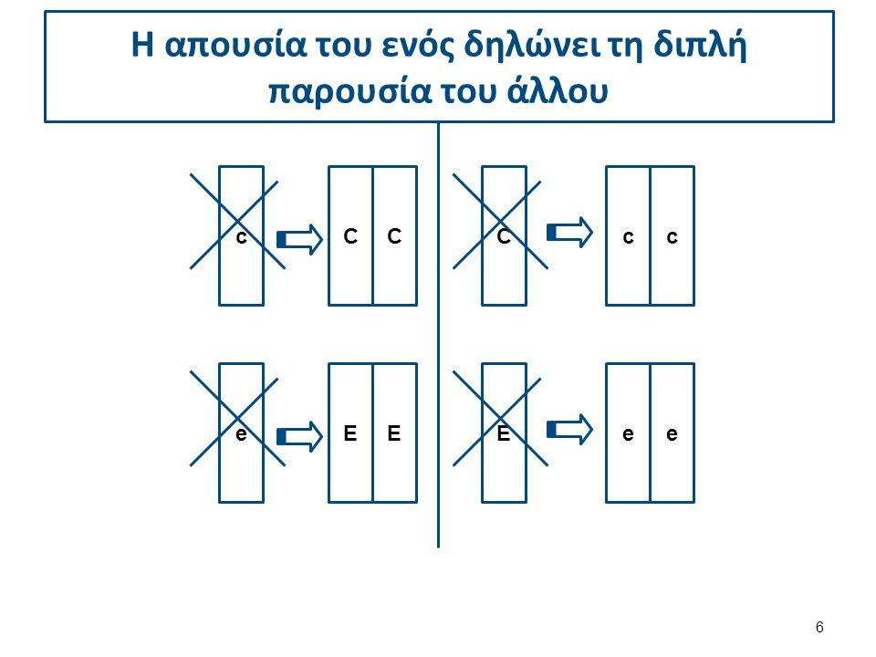 c CCcc C e EEee E Η απουσία του ενός δηλώνει τη διπλή παρουσία του άλλου 6
