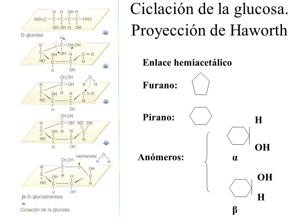 Ciclación de la glucosa. Proyección de Haworth