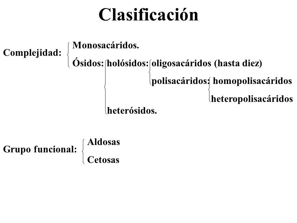 Clasificación Monosacáridos.