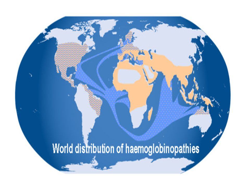 The world distribution of haemoglobinopathies overlaps the geographic distribution of malaria.
