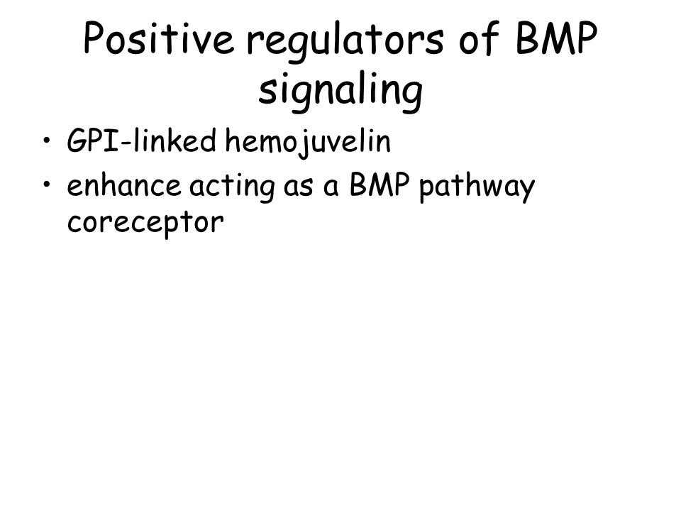Positive regulators of BMP signaling
