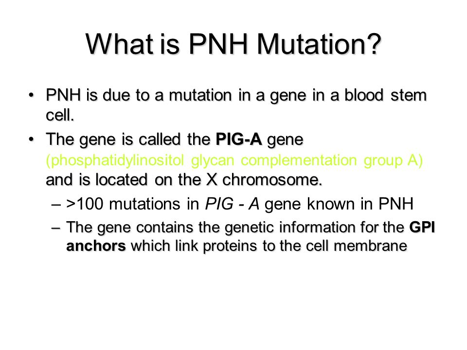 What is PNH Mutation PNH is due to a mutation in a gene in a blood stem cell.