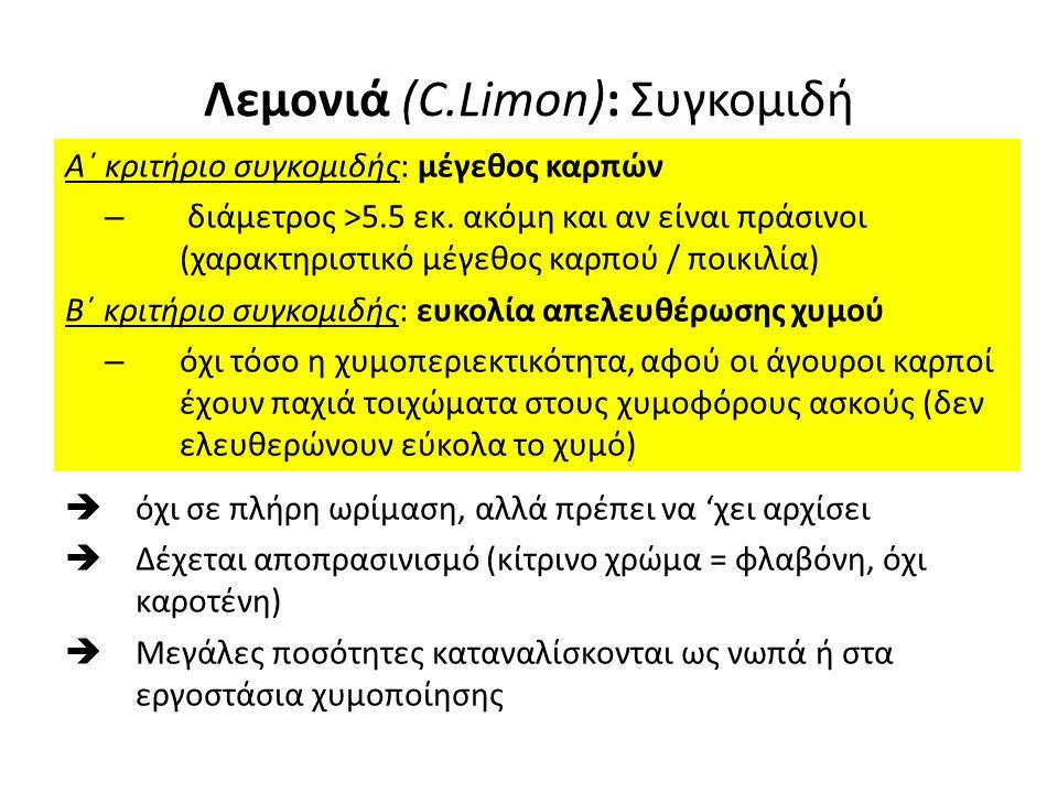 Λεμονιά (C.Limon): Συγκομιδή