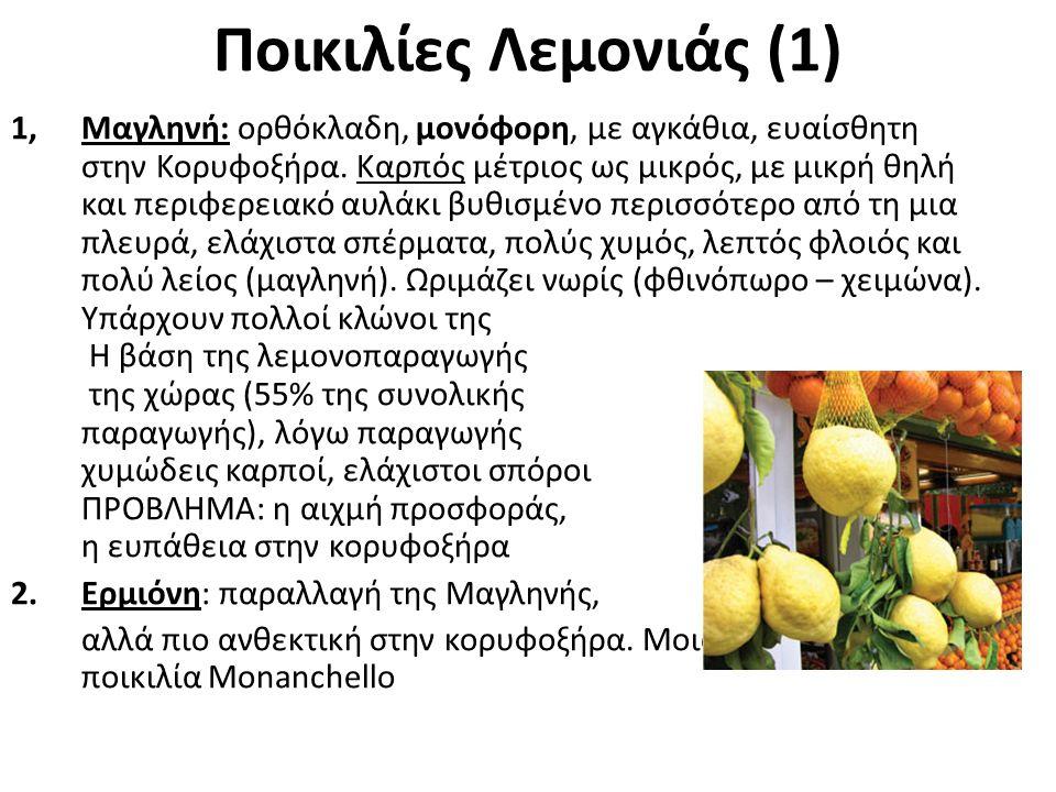 Ποικιλίες Λεμονιάς (1)