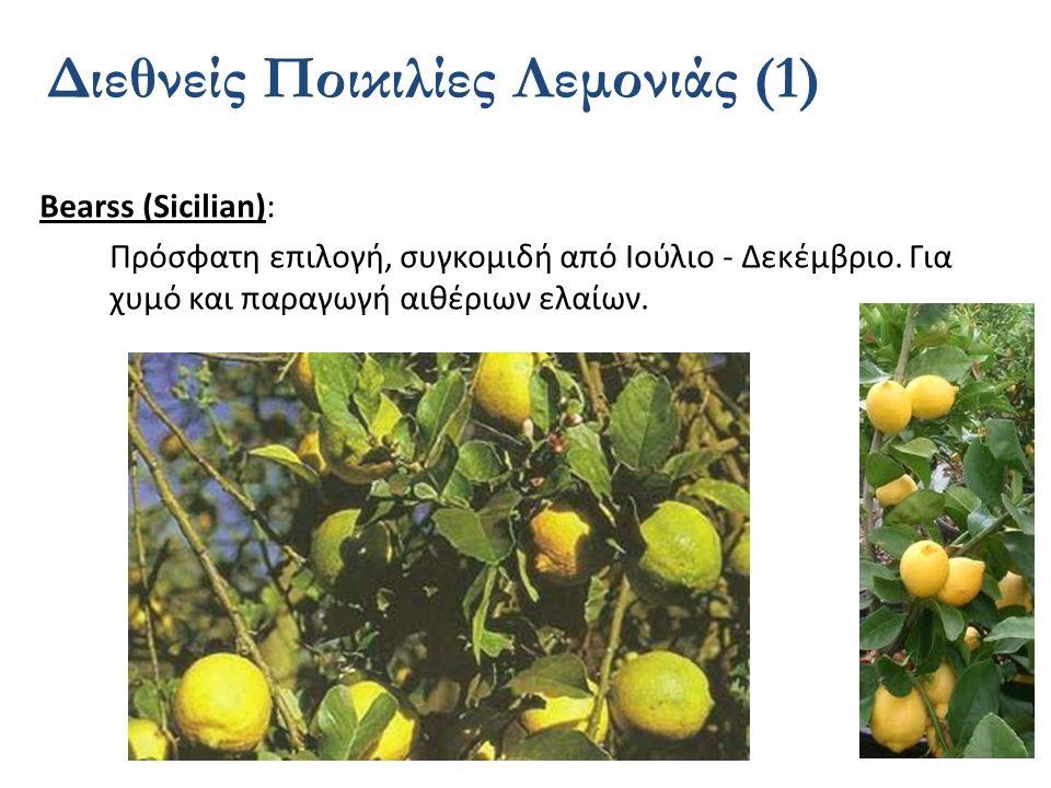 Διεθνείς Ποικιλίες Λεμονιάς (1)