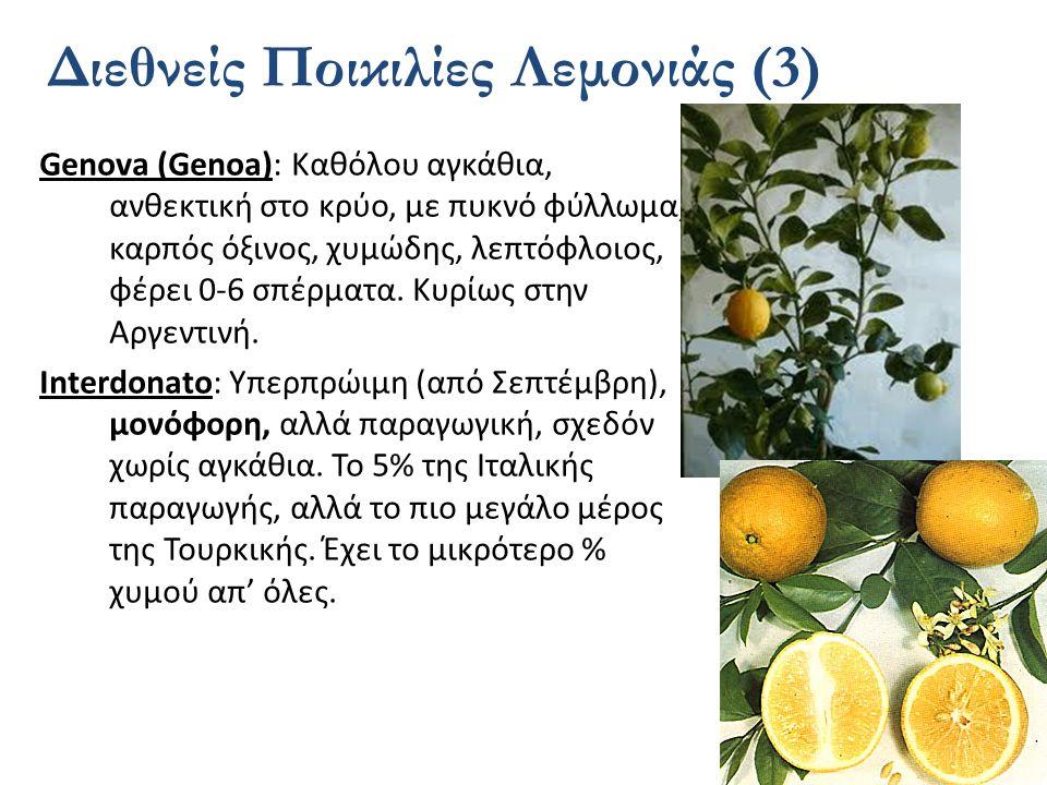 Διεθνείς Ποικιλίες Λεμονιάς (3)