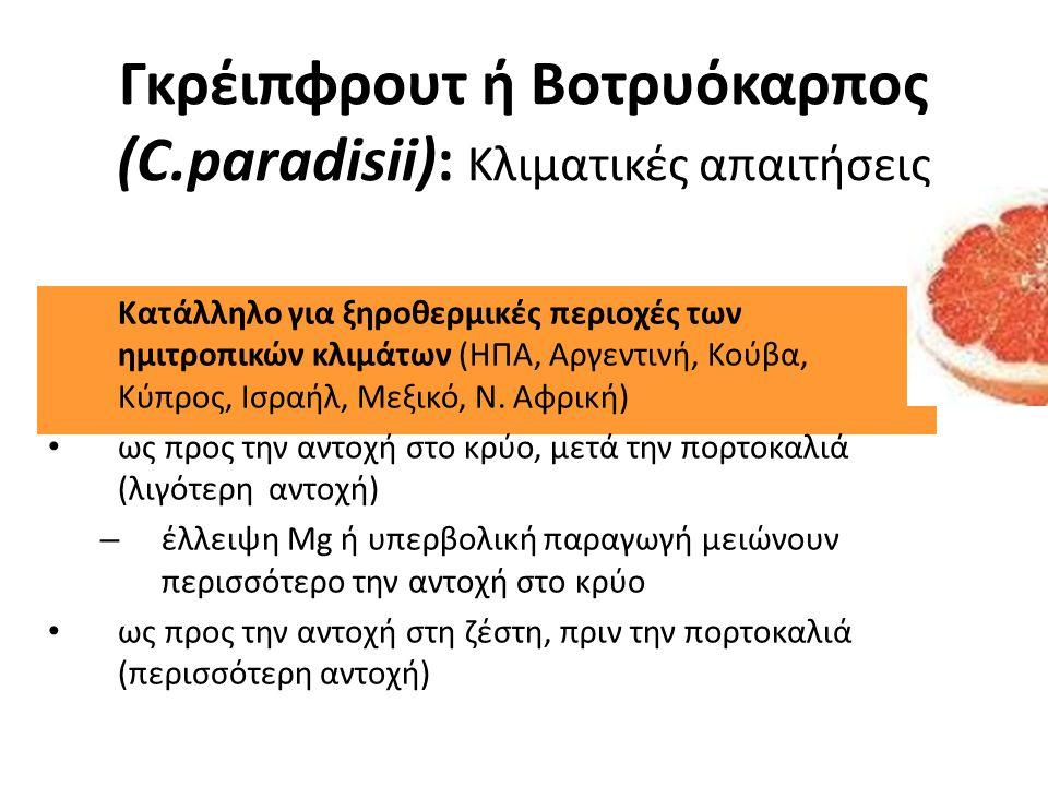 Γκρέιπφρουτ ή Βοτρυόκαρπος (C.paradisii): Κλιματικές απαιτήσεις