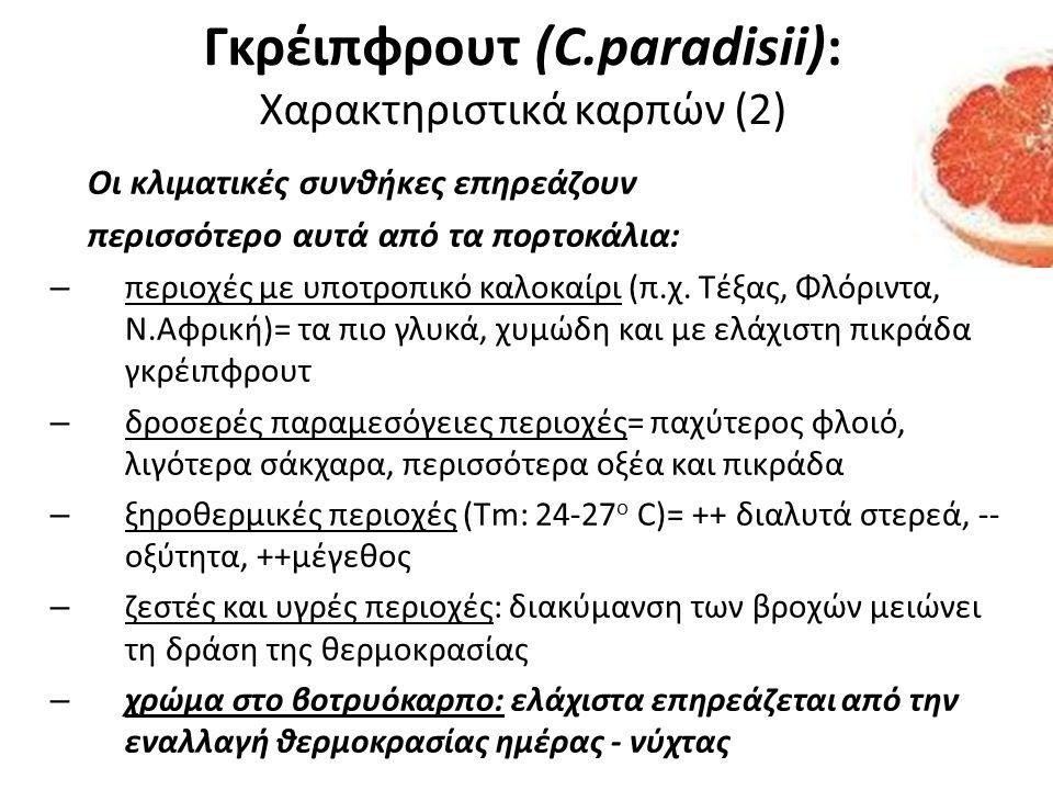 Γκρέιπφρουτ (C.paradisii): Χαρακτηριστικά καρπών (2)