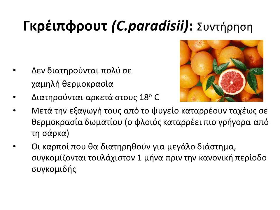 Γκρέιπφρουτ (C.paradisii): Συντήρηση