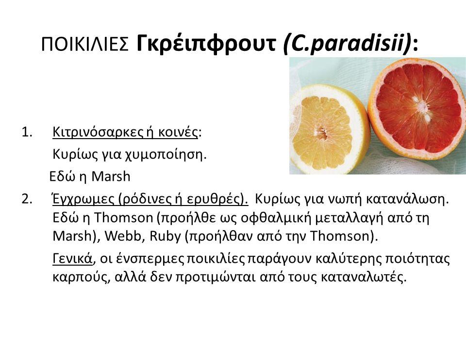 ΠΟΙΚΙΛΙΕΣ Γκρέιπφρουτ (C.paradisii):