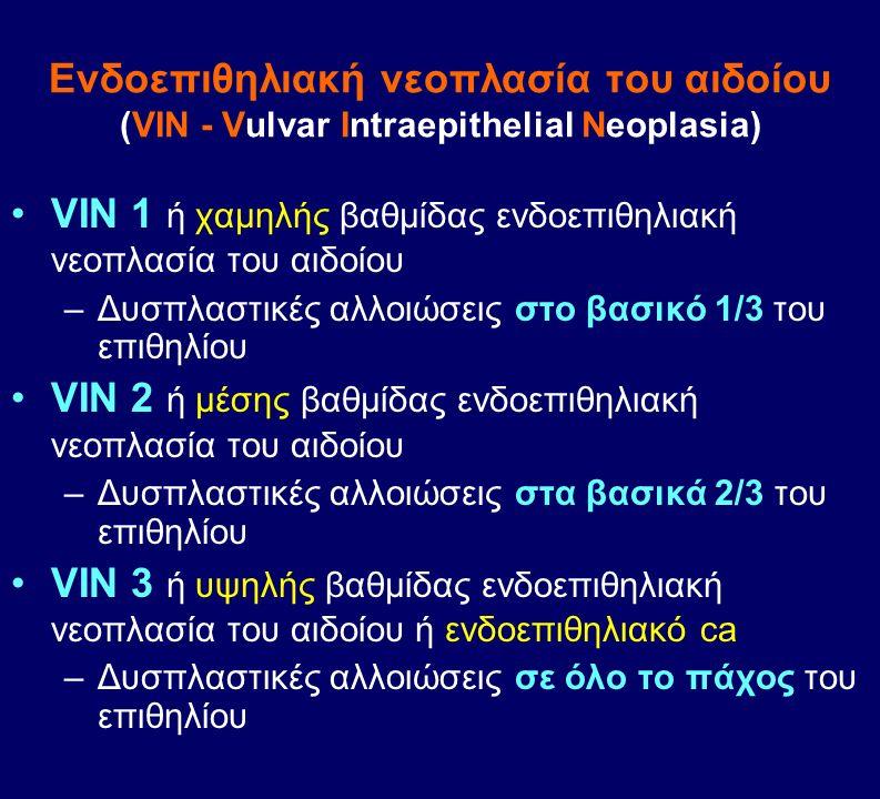 VIN 1 ή χαμηλής βαθμίδας ενδοεπιθηλιακή νεοπλασία του αιδοίου