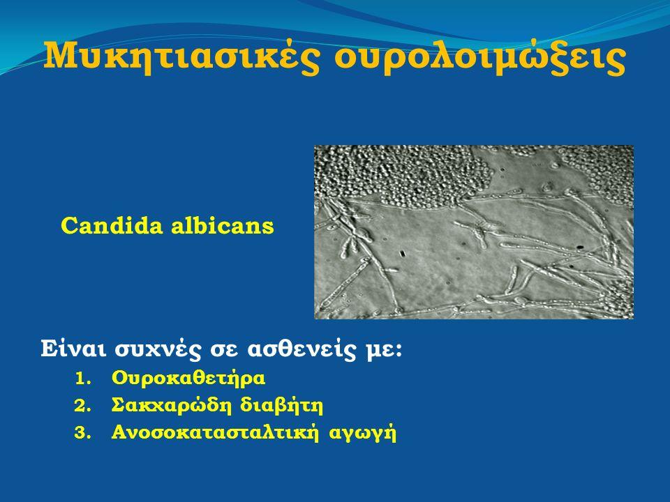 Μυκητιασικές ουρολοιμώξεις
