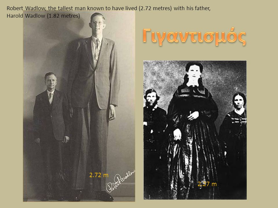 Robert Wadlow, the tallest man known to have lived (2