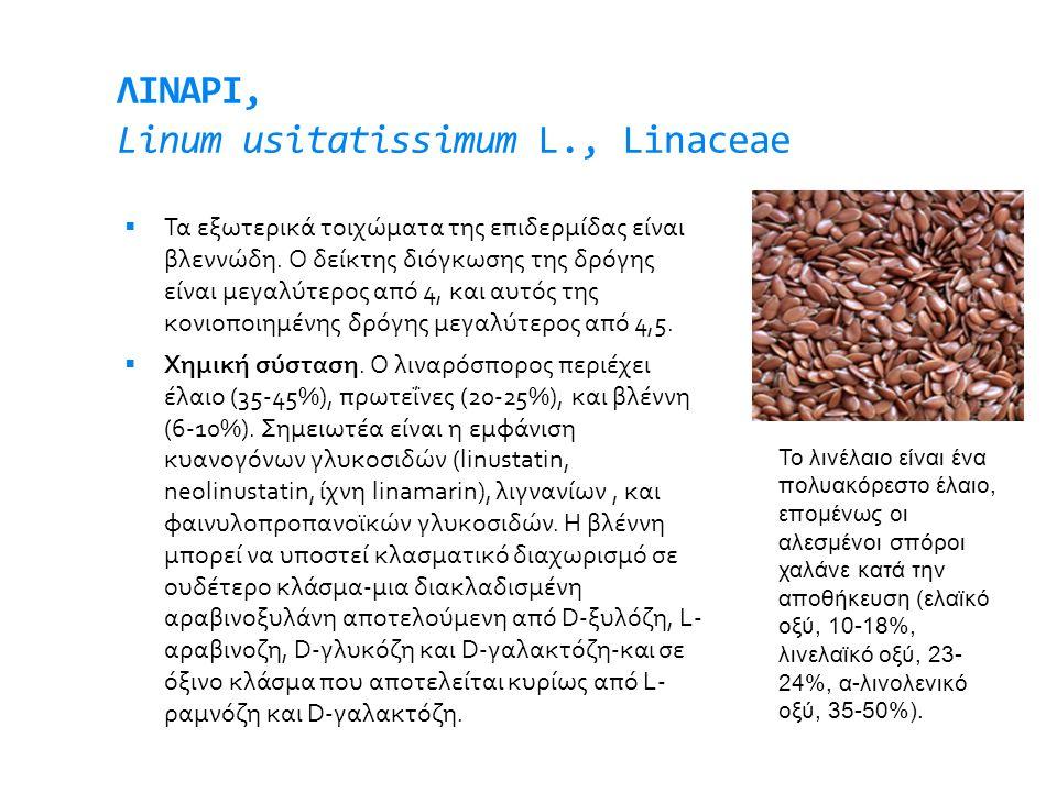 ΛΙΝΑΡΙ, Linum usitatissimum L., Linaceae