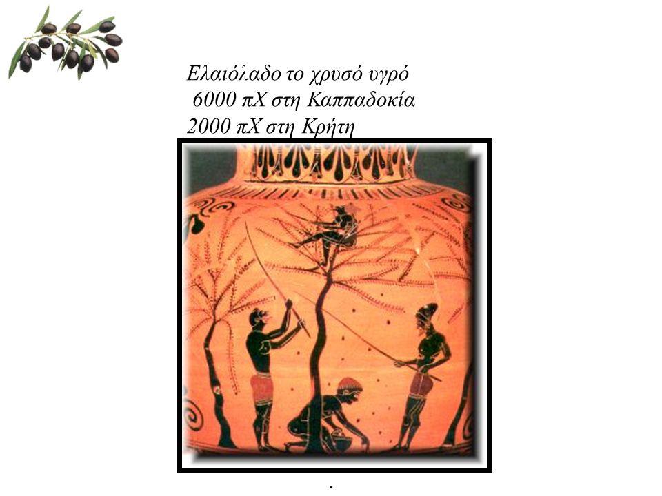 Ελαιόλαδο το χρυσό υγρό 6000 πΧ στη Καππαδοκία 2000 πΧ στη Κρήτη