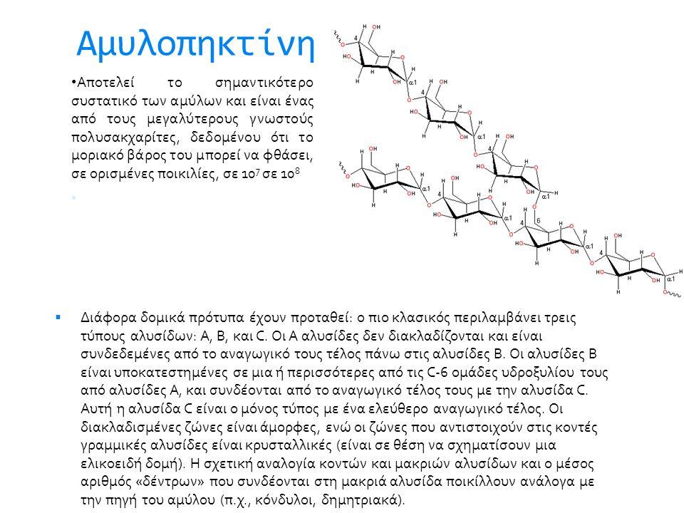Αμυλοπηκτίνη