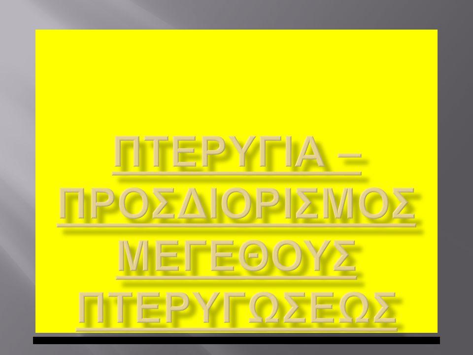 ΠΤΕΡΥΓΙΑ – ΠΡΟΣΔΙΟΡΙΣΜΟΣ ΜΕΓΕΘΟΥΣ ΠΤΕΡΥΓΩΣΕΩΣ