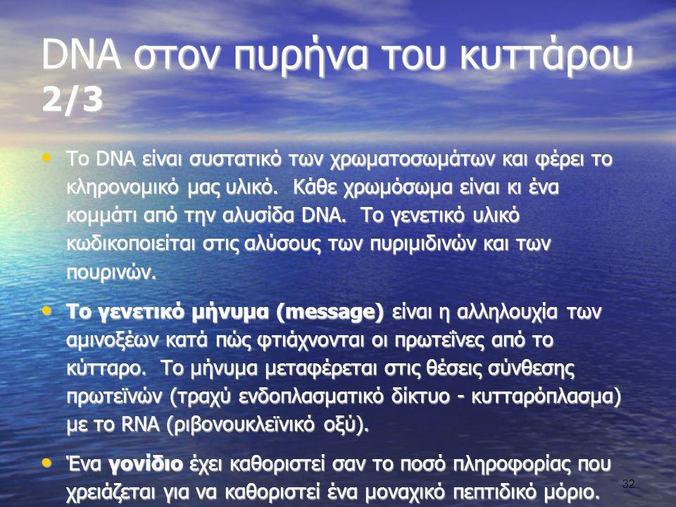 DNA στον πυρήνα του κυττάρου 2/3
