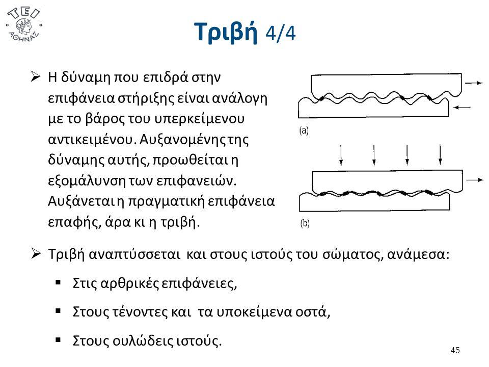 Επίπεδα 1/3 Όλες οι βασικές αρχές μελετώνται και μετρώνται σε δύο διαστάσεις και τρία επίπεδα. Μετωπιαίο επίπεδο.