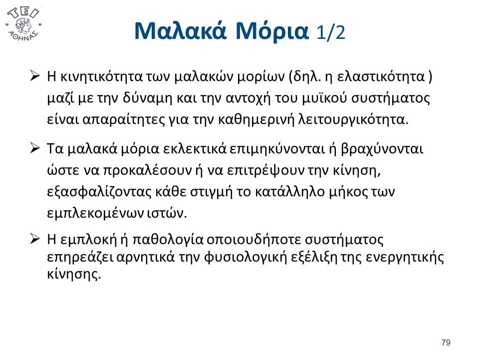 Μαλακά Μόρια 2/2