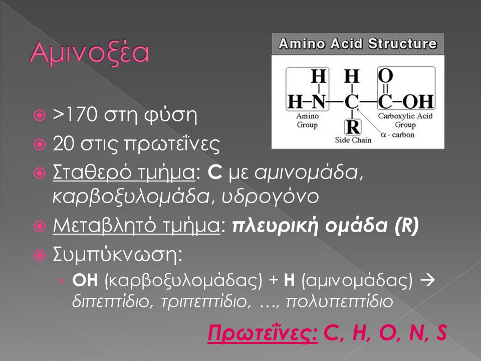 Αμινοξέα Πρωτεΐνες: C, H, O, N, S >170 στη φύση 20 στις πρωτεΐνες